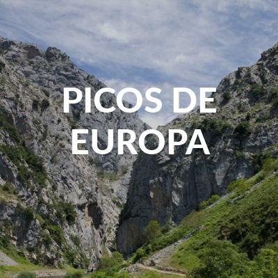 HOTEL RURAL REXACU EN PLENOS PICOS DE EUROPA