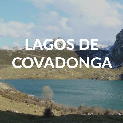 HOTEL RURAL CERCA DE LOS LGOS DE COVADONGA EL REXACU
