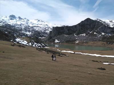 hotel rural cerca de lagos de covadonga
